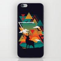 New Ridges iPhone & iPod Skin