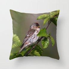 Good Morning Tweety! Throw Pillow