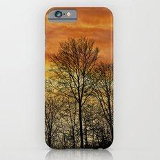 Sunset sky iPhone 6s Slim Case