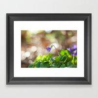 Wild Violet Framed Art Print