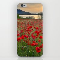 Field Of Poppies In The … iPhone & iPod Skin