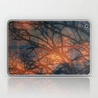Trees In The Golden fog Laptop & iPad Skin