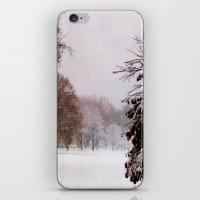 December Day iPhone & iPod Skin