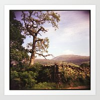 Tree and Stile Art Print