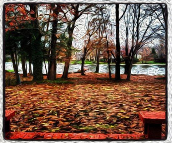 Orange Fall Day Art Print