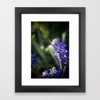 Blue Morning Dew Framed Art Print
