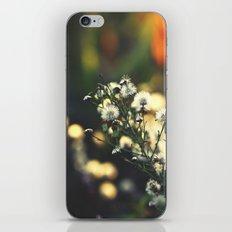 Magical Evenings iPhone & iPod Skin