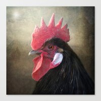 Black Rooster Canvas Print