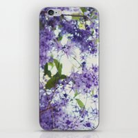 Crazy/Beautiful iPhone & iPod Skin