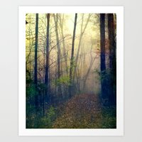 Wandering In A Foggy Woo… Art Print