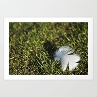 Feather on Green II Art Print