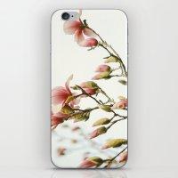 Portraits of Spring - III iPhone & iPod Skin