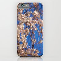 Cherry Blossoms 4 iPhone 6 Slim Case