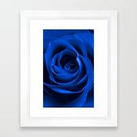 Blue Rose Framed Art Print