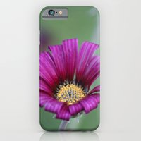 iPhone & iPod Case featuring Shades of green  by Beckah Carney Photography