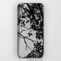Popoyo iPhone & iPod Skin