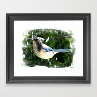 Mr. Blue Framed Art Print