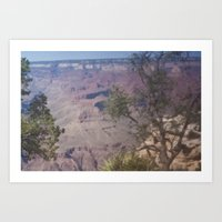 Grand Canyon 9 Art Print