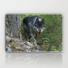 Stalking - Alpha Male Grey Wolf Laptop & iPad Skin
