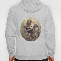 Gorilla in the Mist Hoody