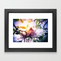 Magnolias Framed Art Print