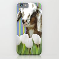 In Search Of Dessert iPhone 6 Slim Case