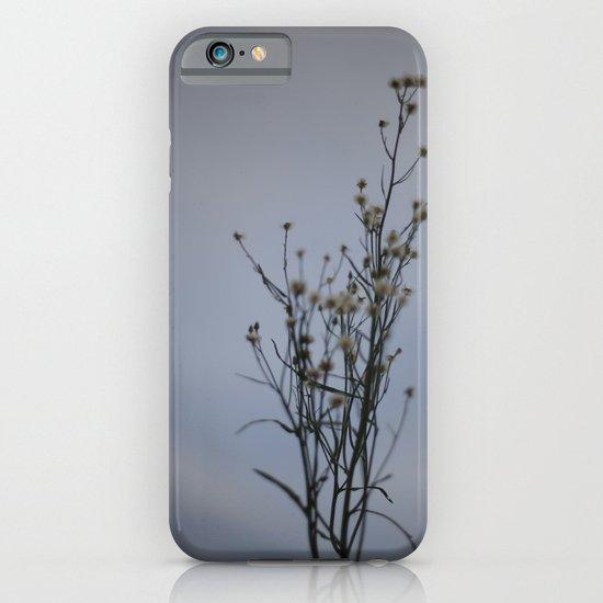 Autumn-Dandelion iPhone & iPod Case