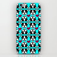 French kissing Boston Terriers iPhone & iPod Skin