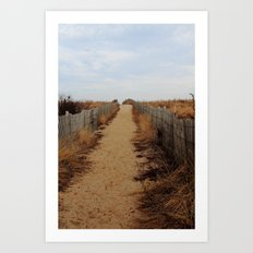 Path to the Beach Art Print