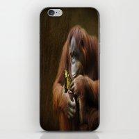 Orangutan and Butterfly iPhone & iPod Skin
