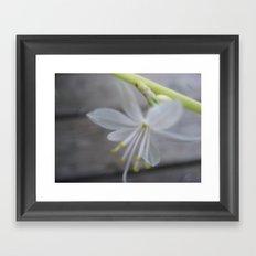 little white one Framed Art Print