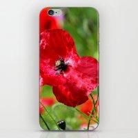 wild poppies iPhone & iPod Skin