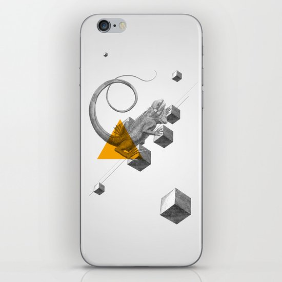 Archetypes Series: Elusiveness iPhone & iPod Skin