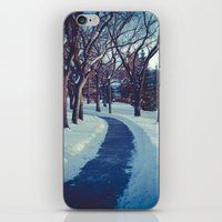 A long & winding road iPhone & iPod Skin
