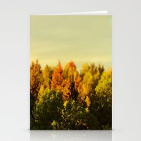 Summer Gold Stationery Cards
