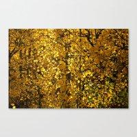Inside a Golden Aspen Forest Canvas Print