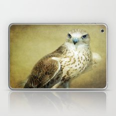 The Saker Falcon Stare Laptop & iPad Skin