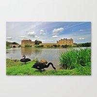 Black Swans at Leeds Castle I Canvas Print