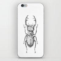 Lucanus cervus iPhone & iPod Skin