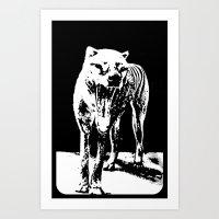 Tasmania Tiger Art Print