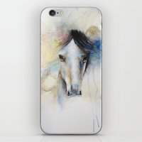 Horse Watercolor Painting iPhone & iPod Skin