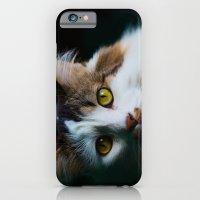 Kootie iPhone 6 Slim Case