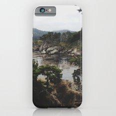 Bluefish Cove iPhone 6 Slim Case
