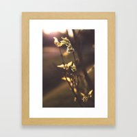 The First Sign of Spring Framed Art Print