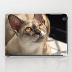 Study of a Cat iPad Case