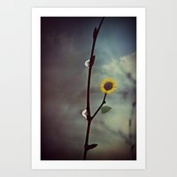 Raindrops & Sunflowers Art Print