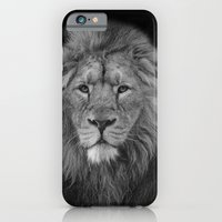 Asiatic Lion iPhone 6 Slim Case