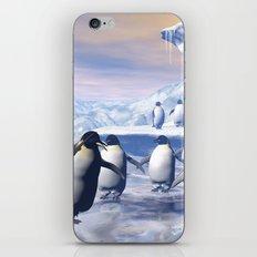 Funny penguins  iPhone & iPod Skin