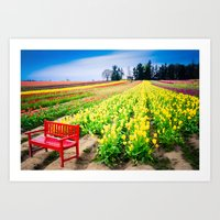Bench And Tulips, Woodbu… Art Print