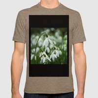 Snowdrops Mens Fitted Tee Tri-Coffee SMALL